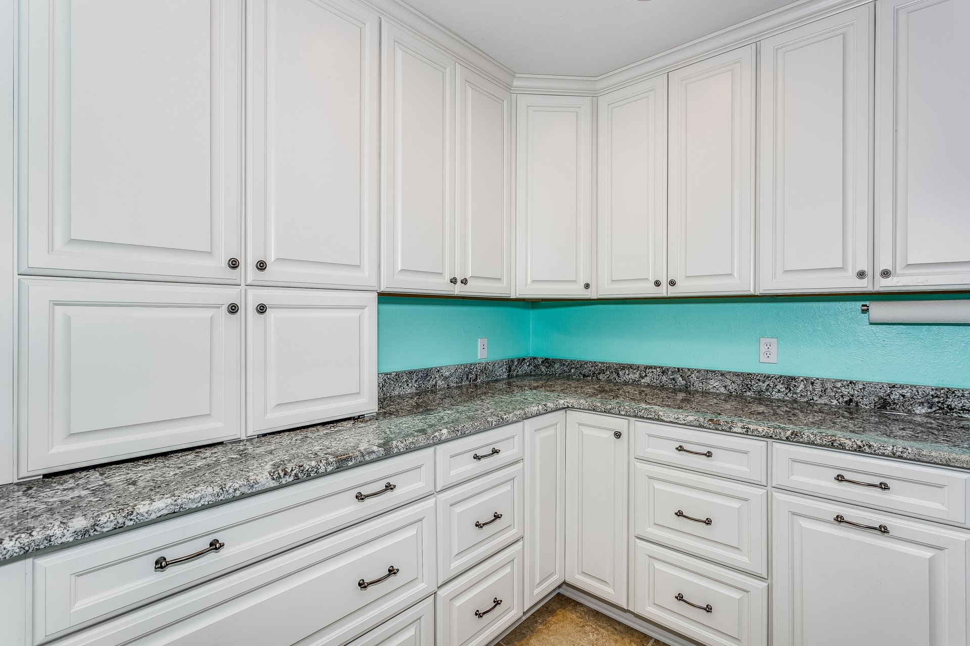 Tons of storage in a Coastal Transitional Kitchen